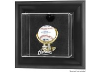 Houston Astros Baseball Ball Display Case Wall Mount