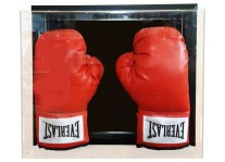 Double Boxing Glove Case - Wall Mountable